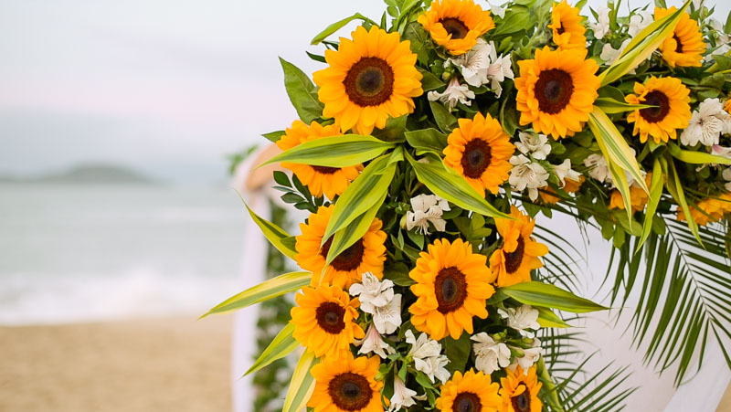 detalhe-decoracao-girassol-casamento-ubatuba-sununga